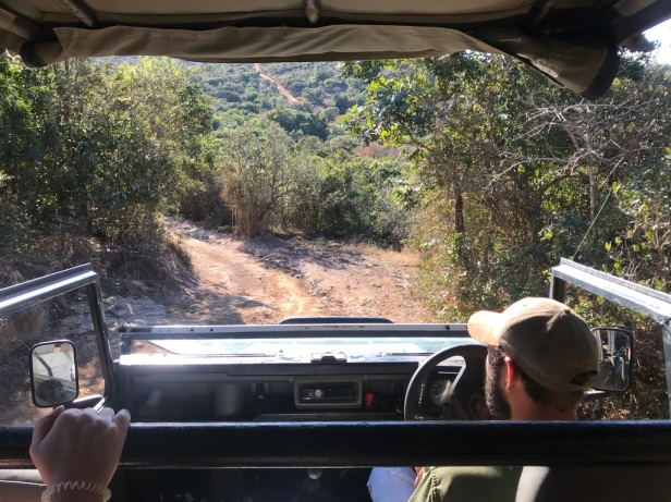 Inkwenkweze Private Game Reserve